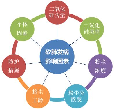 影响矽肺发病的因素.png