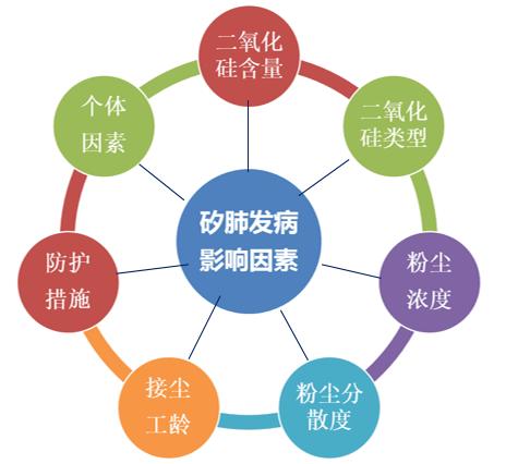 影响矽肺发病的主要因素